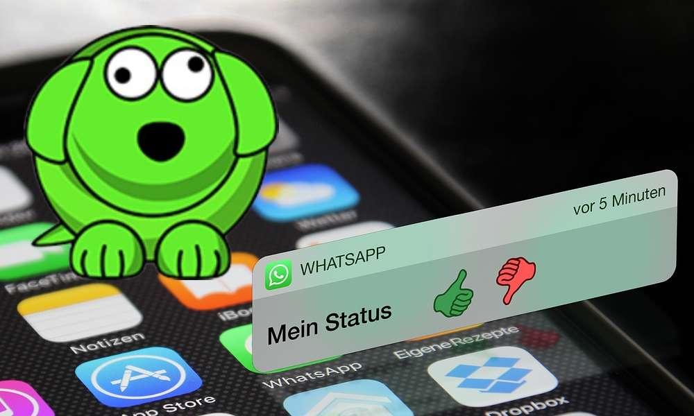 Aplicación WhatsDog